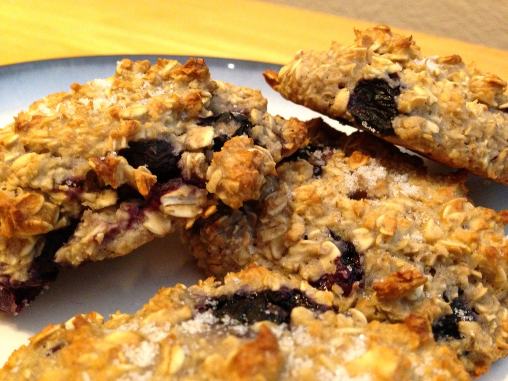 Skinny Blueberry Oat Scones